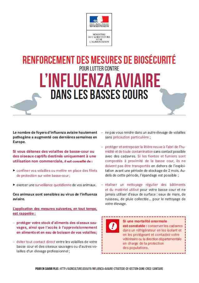 affiche_influenza_aviaire.c.jpg